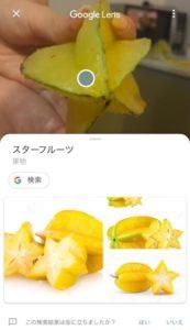 Google Lens調べもの